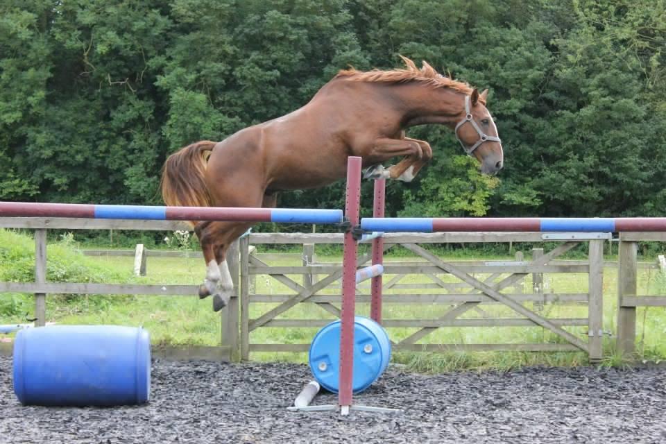loose jumping