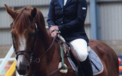 Louise and stallion at stud Vrielink Vans Gravenstafel - from the Stephex Stables