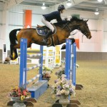 Competing on Sales livery - getting your horse out to comeptitions so to be seen by a wider audience to help sales