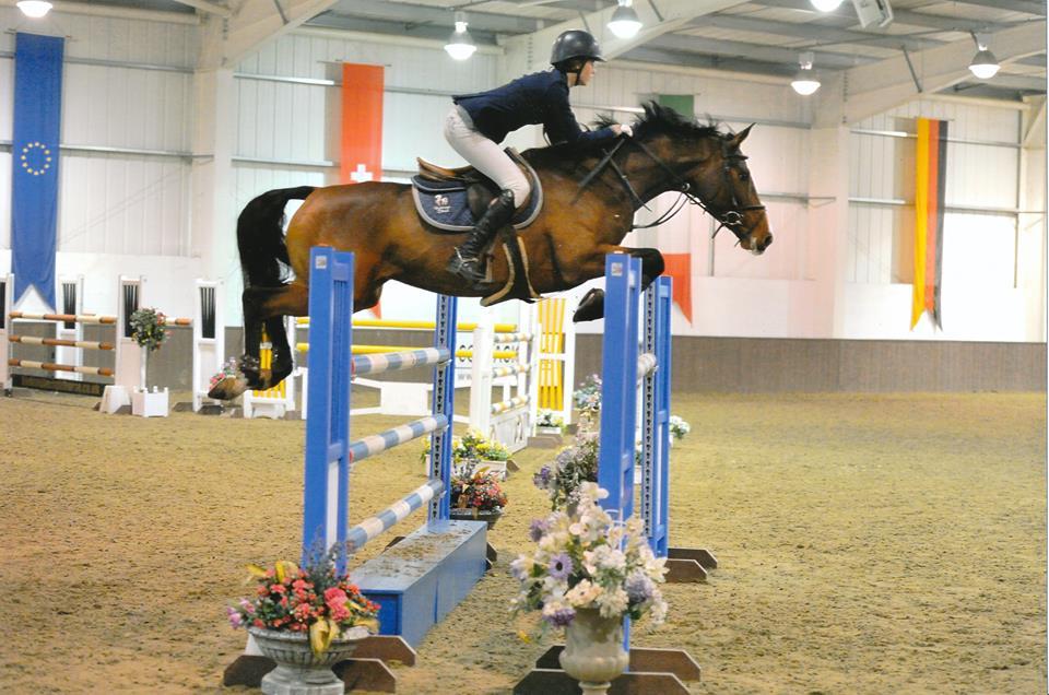 Addington Chipp Wodehouse Stud And Equestrian Centre